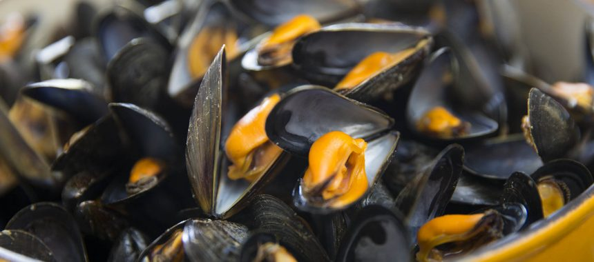 Moules minute