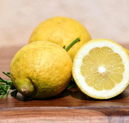 photo_recette_crème_citronnée_ma_recette_de_moules