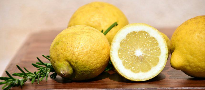 Moules à la crème citronnée